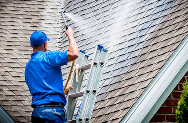 boston roof cleaning